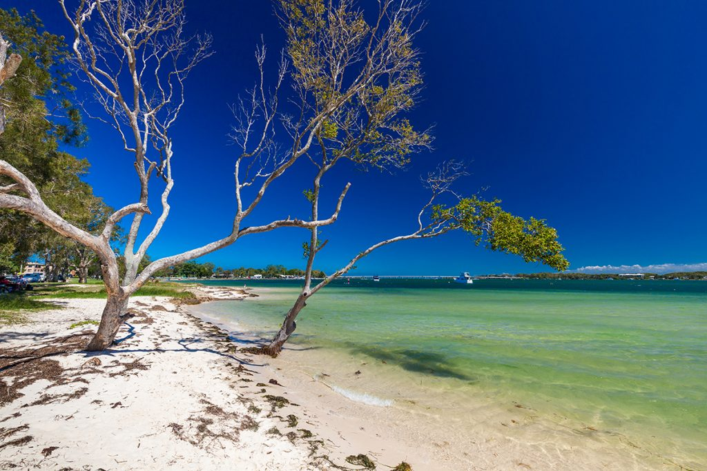 focus-apartments---9-Of-The-Best-Day-Trips-From-The-Gold-Coast