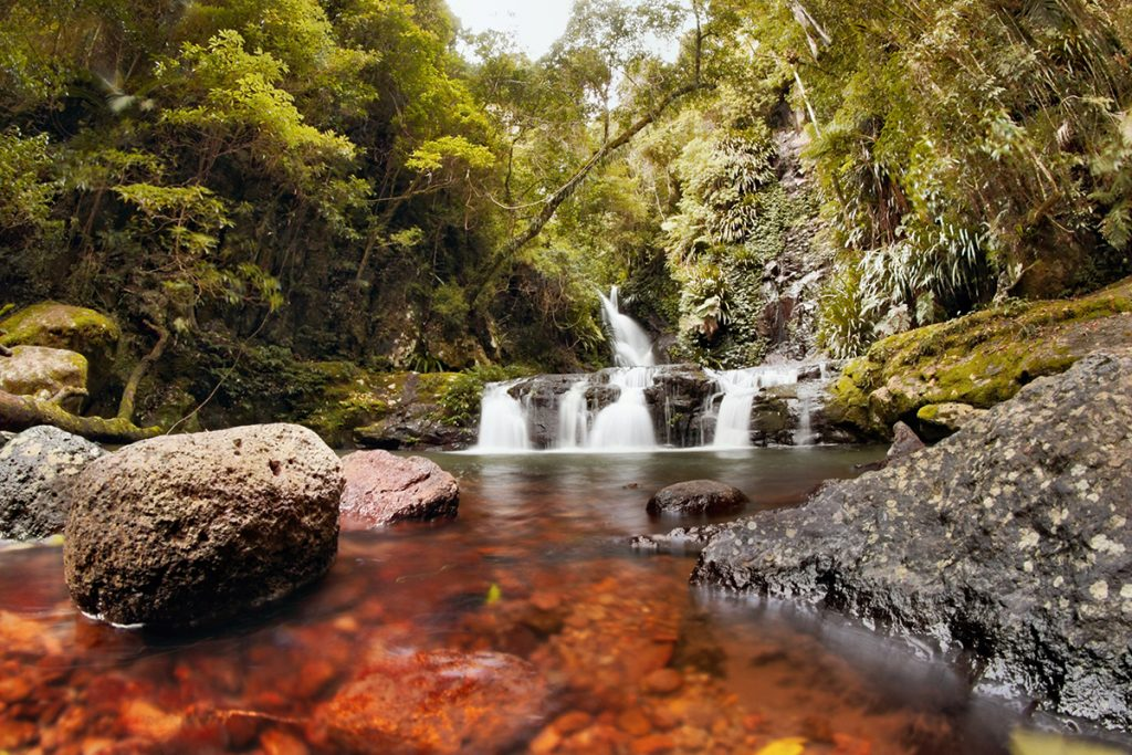 9 Of The Gold Coast S Best Waterfalls And Rock Pools For Swimming Focus Apartments